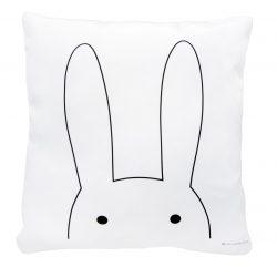 uszy królika